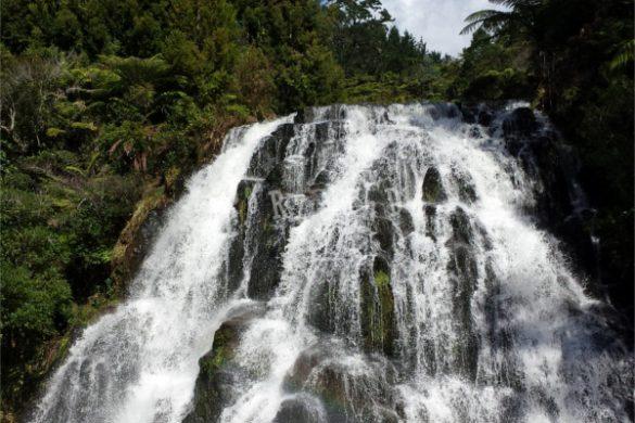 Cascata nella foresta di Coromandel in Nuova Zelanda