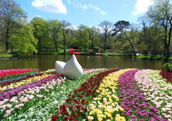 Laghetto e fiori del parco botanico di Keukenhof in Olanda