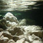 greto del fiume