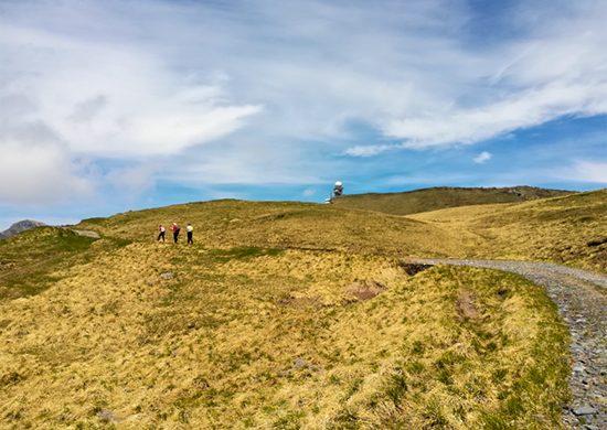 Radura sul monte Zoufplan, sopra Cercivento