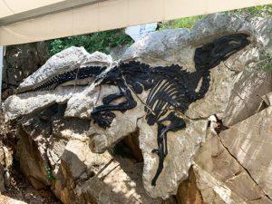Dinosauro Antonio al Villaggio del Pescatore